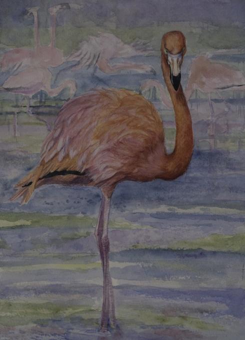 Flamingo Apart by Linda Saboe