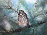 Bird on a Wire by Linda Saboe