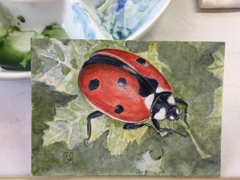 Ladybug by Linda Saboe