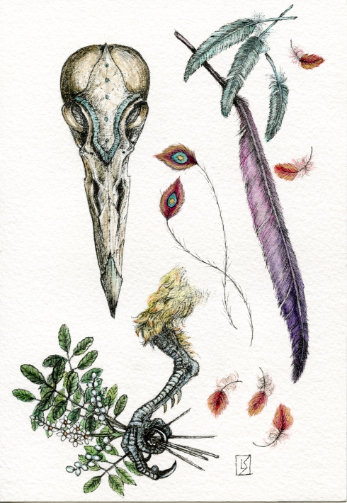 "Anatomy of the Last Phoenix by Linda Saboe. Ink and watercolor on paper, 5""x7""."